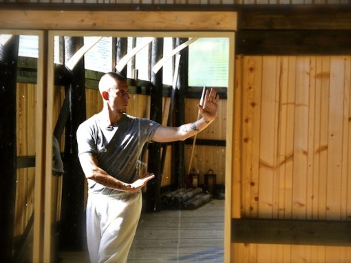 Baguazhang in Sweden