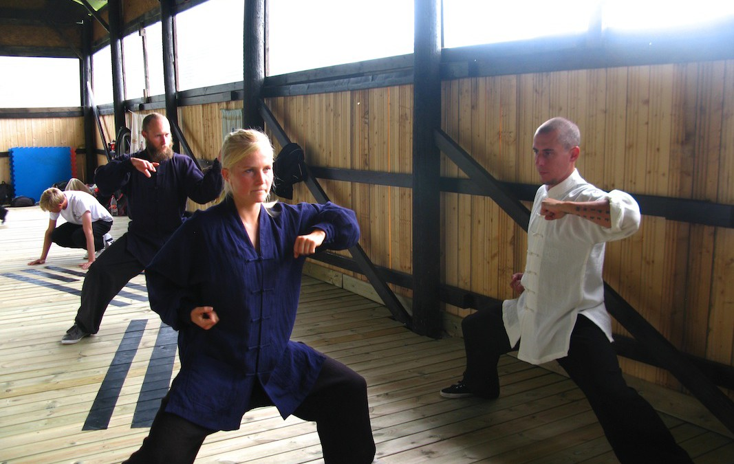 Baguazhang Elbow